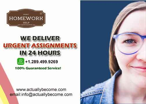24 hours assignment writing service